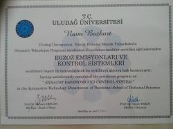 egzoz-sertifika2